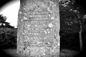 HÄR VAPENÖVADE HOBURGS KOMPANI 1811-1886