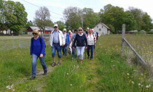 30 personer deltog i vandringen.